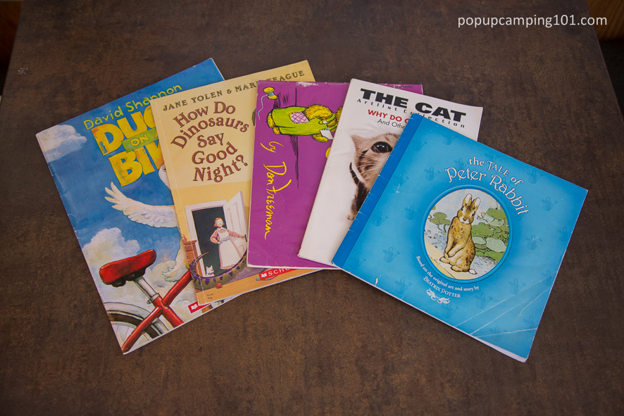 children's books to read while camping
